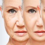 envejecimiento celular